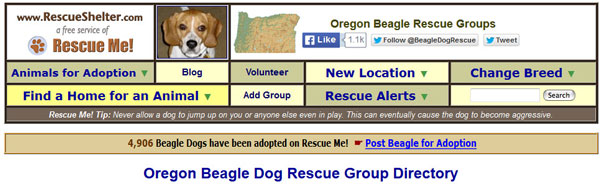 Beagle Rescue header